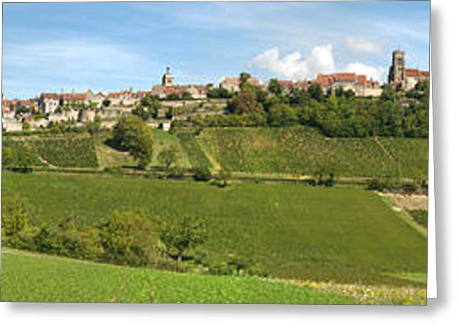Burgundy Greeting Cards - Vineyards With The Town On A Hill Greeting Card by Panoramic Images