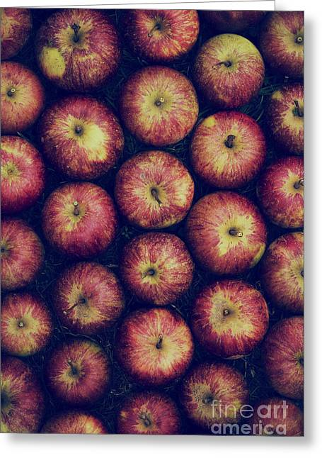 Owned Greeting Cards - Vintage Apples Greeting Card by Tim Gainey