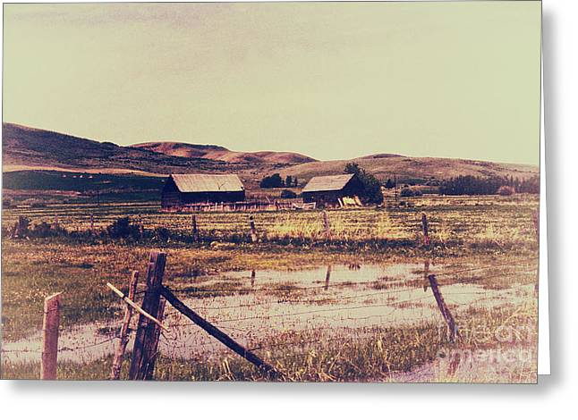 Old Fence Posts Digital Greeting Cards - Vintage Barns  Greeting Card by Chris Berry
