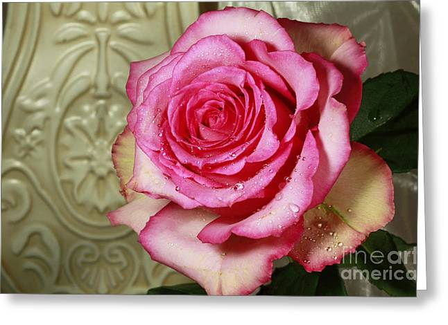 Vintage Beauty Rose Greeting Card by Inspired Nature Photography Fine Art Photography