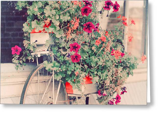 Vintage Bicycle Flowers Photograph Greeting Card by Elle Moss