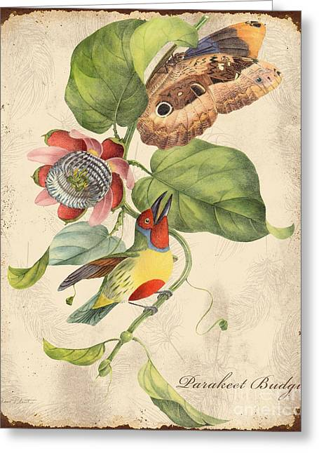 Parrot Art Print Greeting Cards - Vintage Bird Study-B Greeting Card by Jean Plout