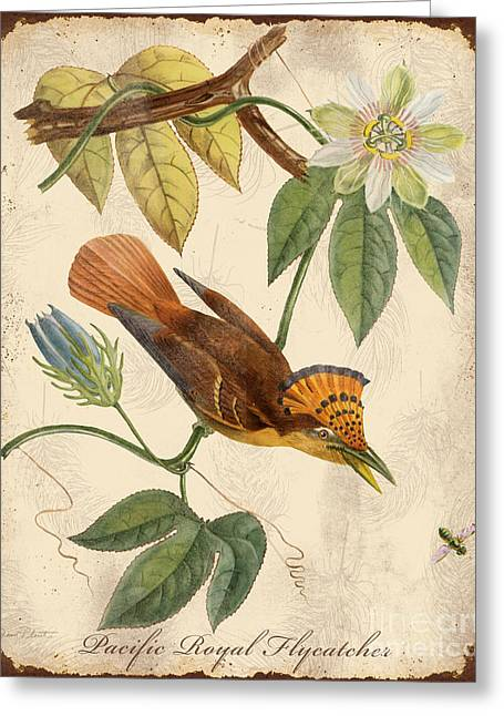 Nature Study Greeting Cards - Vintage Bird Study-C Greeting Card by Jean Plout