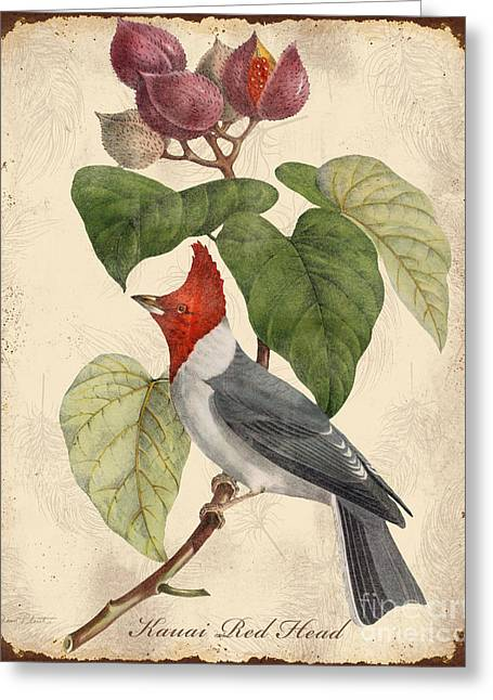 Parrot Art Print Greeting Cards - Vintage Bird Study-D Greeting Card by Jean Plout