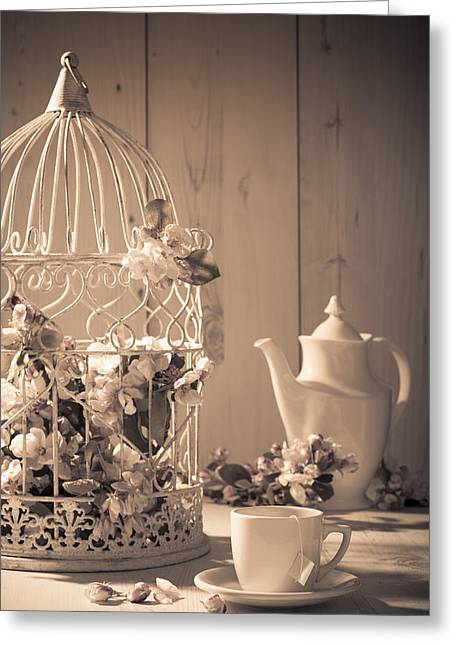 Flower Display Greeting Cards - Vintage Birdcage Greeting Card by Amanda And Christopher Elwell