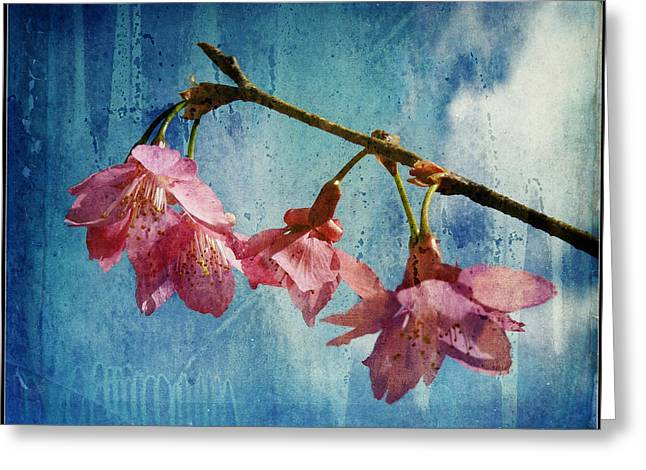 Dripping Rose Greeting Cards - Vintage Blossoms Greeting Card by Carla Parris