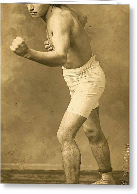 Champ. Boxer Greeting Cards - Vintage Boxer 1 Greeting Card by Francis  Chapman