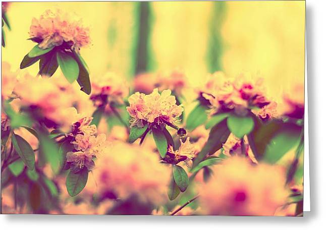 Flora Greeting Cards - Vintage Bumblebees Bush Greeting Card by Yevgeni Kacnelson