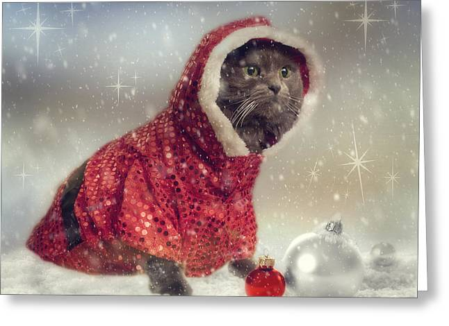 Cat Prints Photographs Greeting Cards - Vintage Cat Holiday Greeting Card by Joann Vitali