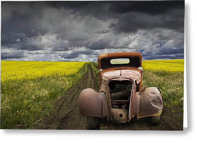 Old Trucks Greeting Cards - Vintage Chevy Pickup on a dirt path through a canola field Greeting Card by Randall Nyhof