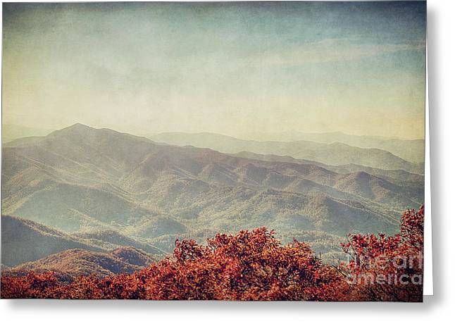 Asheville Nc Greeting Cards - Vintage Fall Greeting Card by Emily Kay