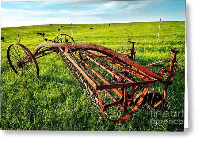 Cows Framed Prints Greeting Cards - Vintage Farm Equipment I - Blue Ridge Greeting Card by Dan Carmichael