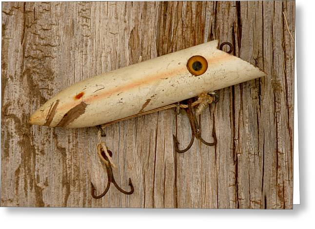 Minnows Greeting Cards - Vintage Fishing Lure Greeting Card by Art Block Collections