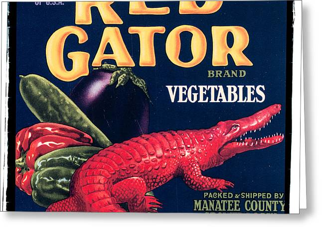 20s Greeting Cards - Vintage Florida Food Signs 6 - Red Gator Brand - Square Greeting Card by Ian Monk