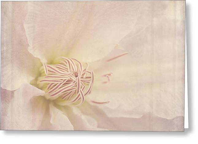 Stamen Digital Art Greeting Cards - Vintage Flower Art - A Beautiful Place Greeting Card by Jordan Blackstone