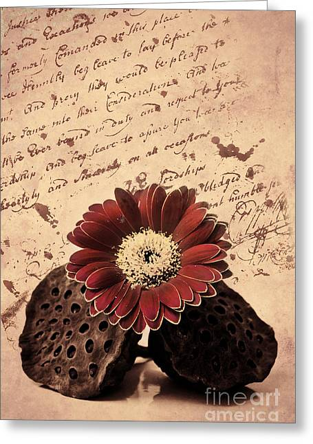 Capsule Greeting Cards - Vintage letters Greeting Card by Angela Doelling AD DESIGN Photo and PhotoArt