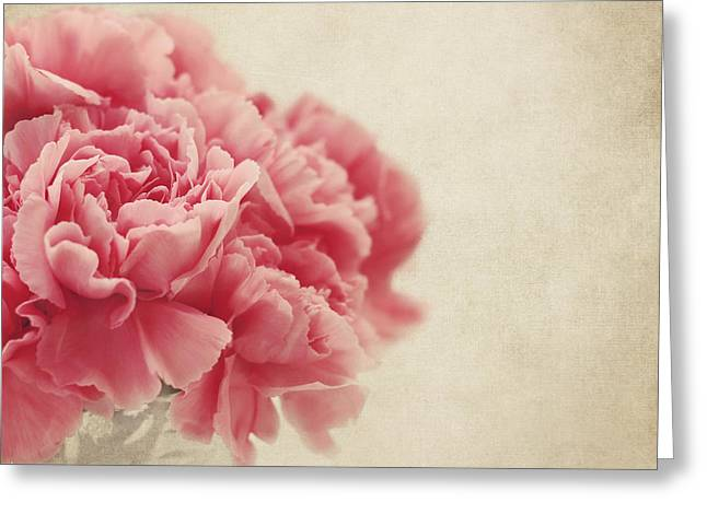 Vintage Pink Carnations Greeting Card by Kim Hojnacki