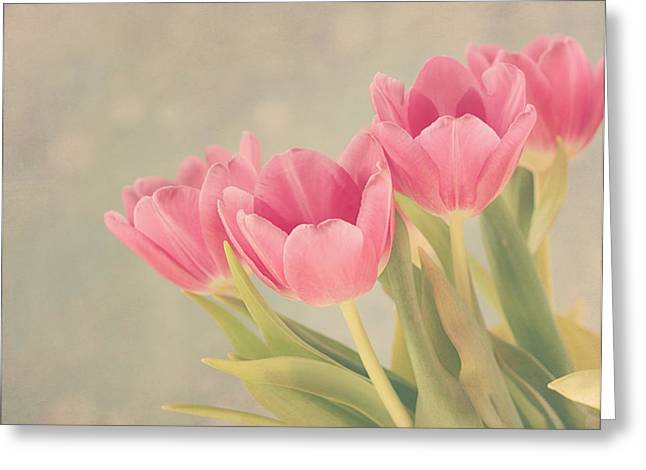 Vintage Pink Tulips Greeting Card by Kim Hojnacki