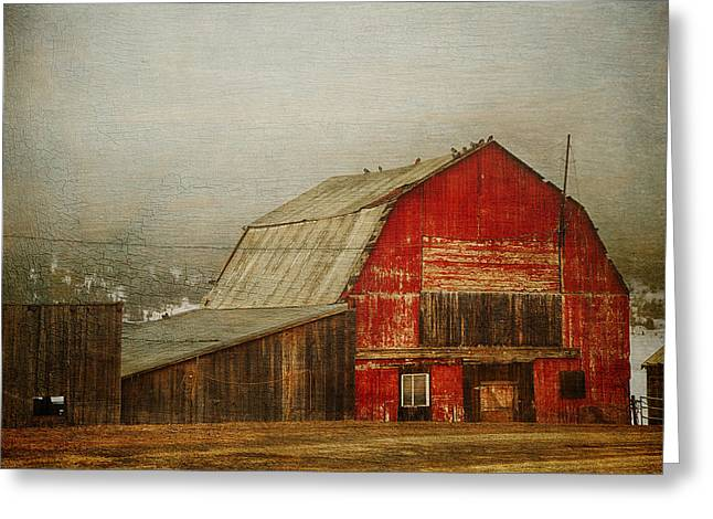 Red Roofed Barn Greeting Cards - Vintage Red Barn Greeting Card by Theresa Tahara
