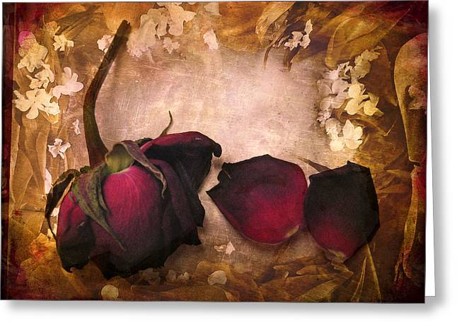 Floral Digital Art Greeting Cards - Vintage Rose Petals Greeting Card by Jessica Jenney