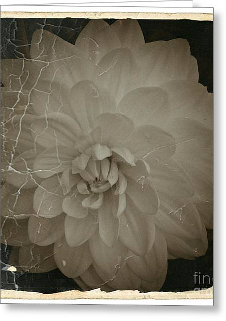 Neurotic Images Photography Greeting Cards - Vintage Sepia Dahlia 1 Greeting Card by Chalet Roome-Rigdon
