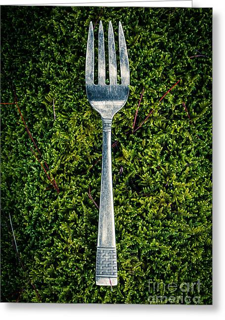 Kitchenware Greeting Cards - Vintage silver fork on moss Greeting Card by Edward Fielding
