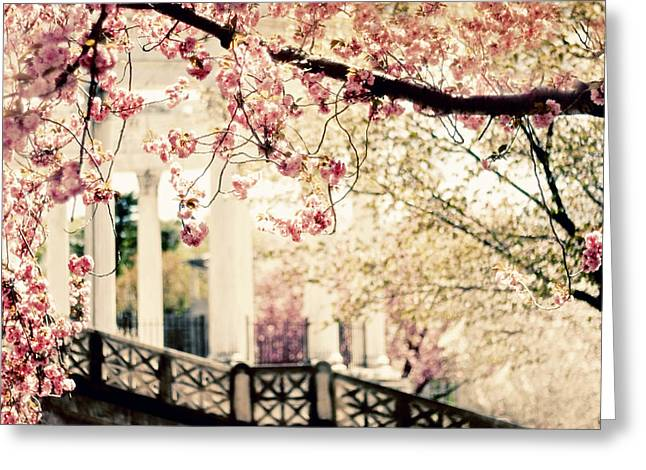 Grecian Greeting Cards - Grecian Garden Greeting Card by Jessica Jenney