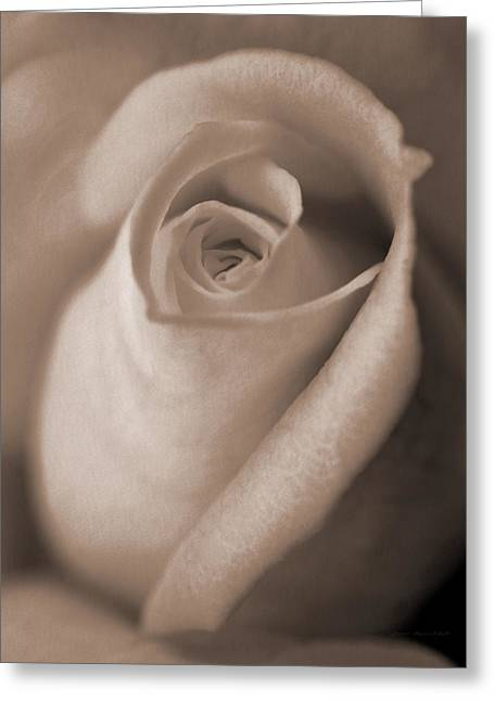 Light Taupe Greeting Cards - Vintage Taupe Rose Bud Flower Greeting Card by Jennie Marie Schell