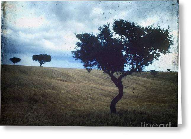Outdoors Greeting Cards - Vintage trees Greeting Card by Bernard Jaubert