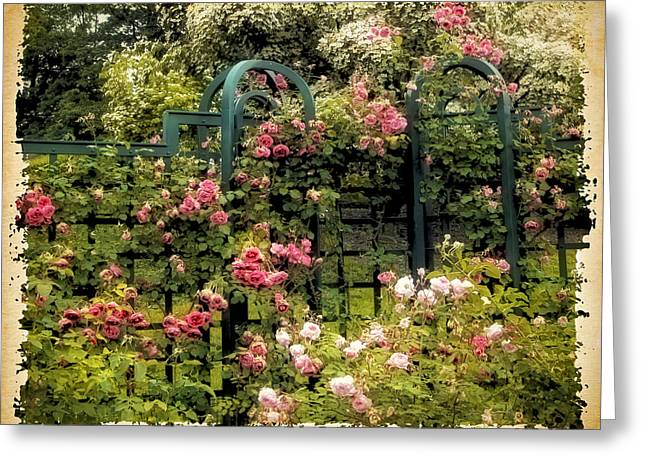 Transfer Greeting Cards - Vintage Trellis Greeting Card by Jessica Jenney