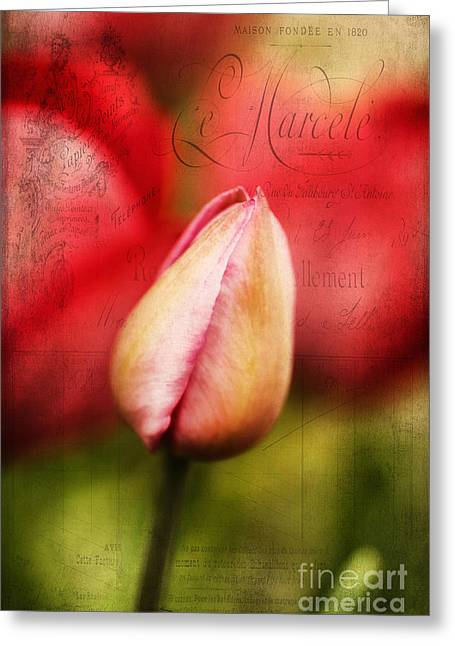 Texture Floral Greeting Cards - Vintage Tulip Greeting Card by Darren Fisher