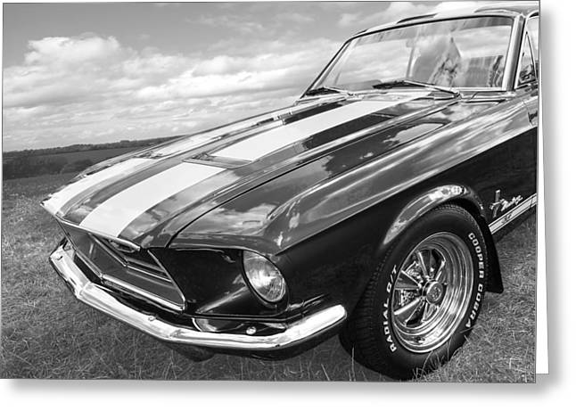 Custom Automobile Greeting Cards - Vintage V8 in Black and White - Mustang GT - Square Greeting Card by Gill Billington