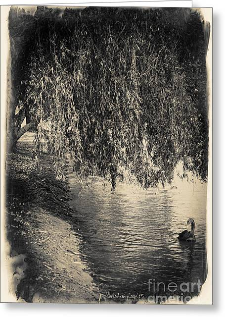 Willow Lake Digital Art Greeting Cards - Vintage Views III - Tranquility Greeting Card by Chris Armytage