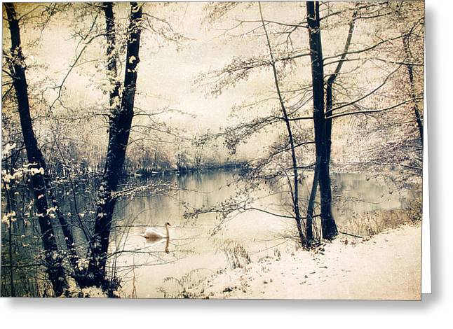 Swans... Greeting Cards - Vintage Winter  Greeting Card by Jessica Jenney