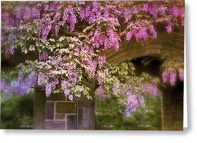 Wisteria Leaves Greeting Cards - Vintage Wisteria Greeting Card by Jessica Jenney