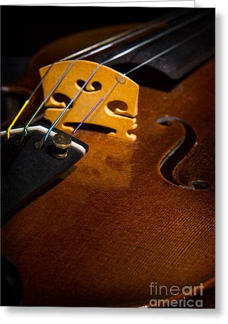 Still Life Photographs Greeting Cards - Viola Violin String Bridge Close in Color 3075.02 Greeting Card by M K  Miller