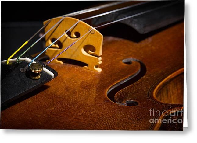 """still Life Photographs"" Greeting Cards - Viola Violin String Bridge Close in Color 3076.02 Greeting Card by M K  Miller"