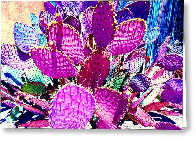 Scottsdale Artist Greeting Cards - Violeta Greeting Card by Michelle Dallocchio