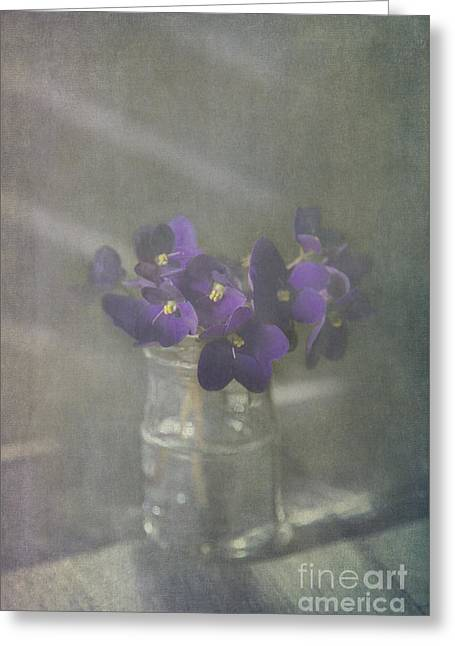 Water Jars Greeting Cards - Violets Greeting Card by Elena Nosyreva