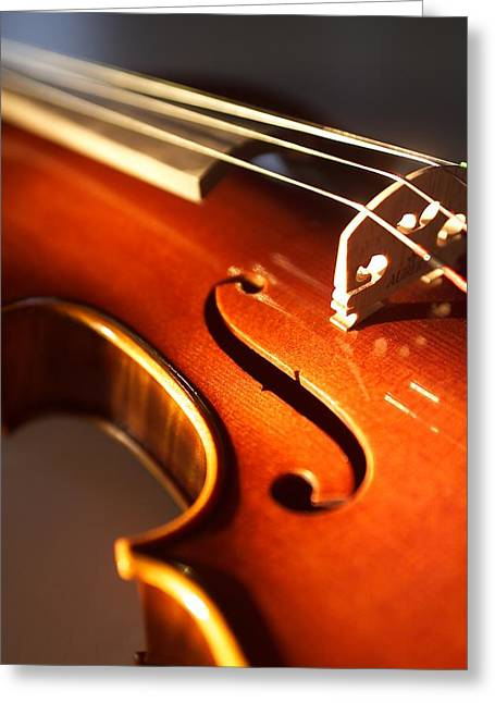 Stringed Instrument Greeting Cards - Violin VI Greeting Card by Jon Neidert