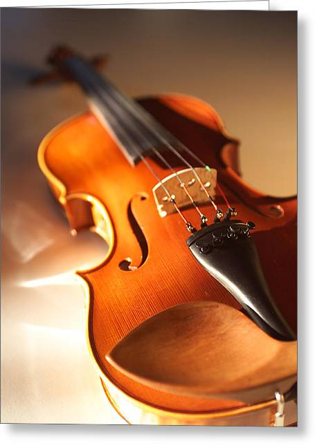 Stringed Instrument Greeting Cards - Violin XVI Greeting Card by Jon Neidert