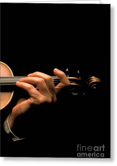Playing Musical Instruments Greeting Cards - Violin Musician Greeting Card by Novastock