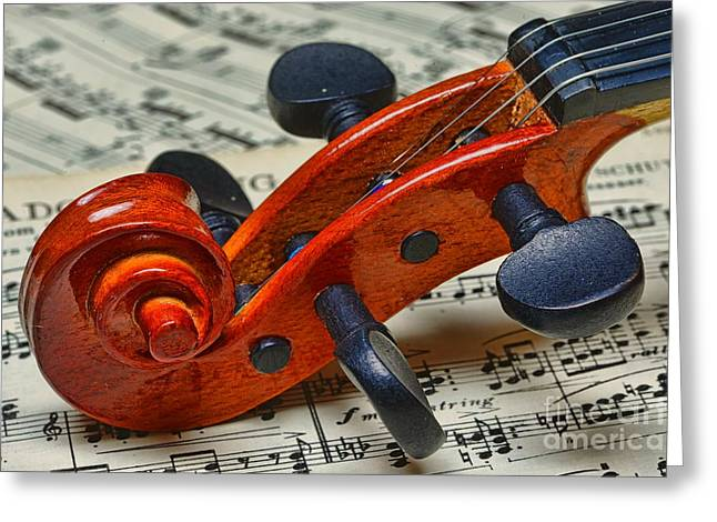 Chin Up Photographs Greeting Cards - Violin Scroll Up Close Greeting Card by Paul Ward