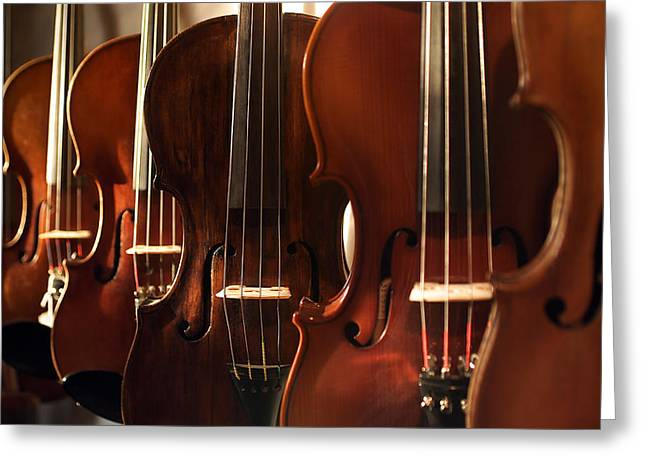 Violin Bows Violin Bows Greeting Cards - Violins Horizontal Greeting Card by Jon Neidert