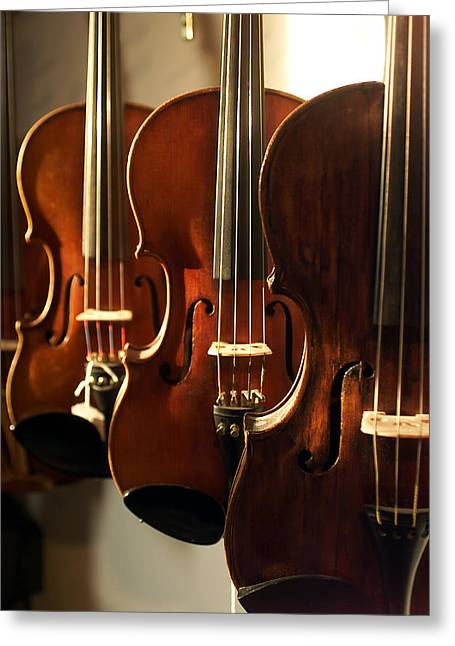 Violin Bows Violin Bows Greeting Cards - Violins Vertical Greeting Card by Jon Neidert
