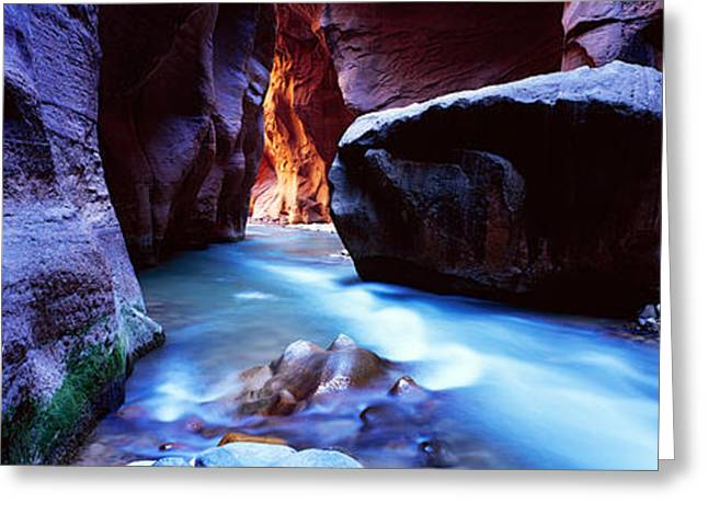 Non Urban Scene Greeting Cards - Virgin River At Zion National Park Greeting Card by Panoramic Images