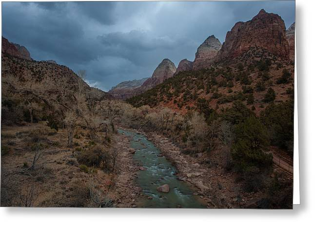 North Fork Greeting Cards - Virgin River in Zion  Greeting Card by Bruce Siulinski