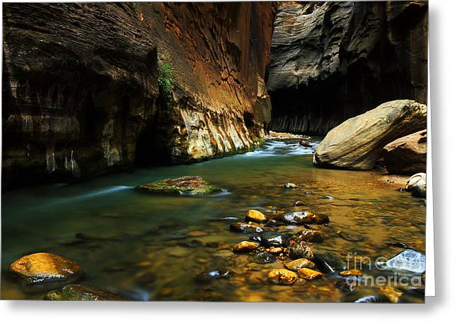 Canadian Photographer Greeting Cards - Virgin River Narrows Greeting Card by Bob Christopher
