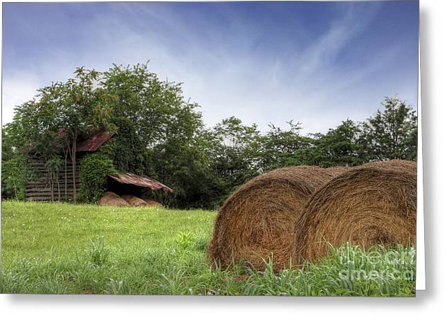Run Down Greeting Cards - Virginia Tobacco Barn Greeting Card by Benanne Stiens