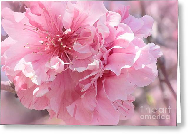 Pink Blossoms Greeting Cards - Vision in Pink - Digital Painting Greeting Card by Carol Groenen